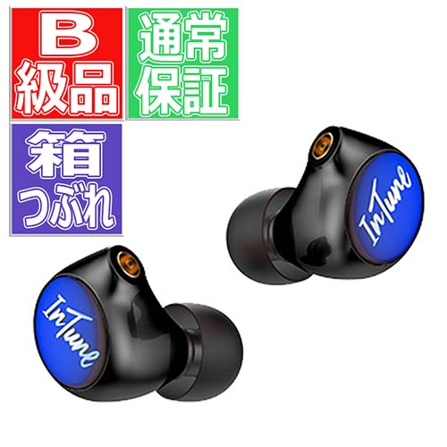 【B級品】 iBasso Audio IT01X ブラック