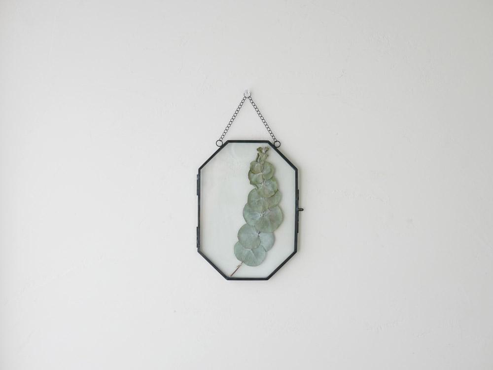 【POSH LIVING】ガラスフレーム  オクト ブラック