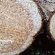 hinoki LAB リフレッシュセット【送料込 (北海道・沖縄・一部離島は別途500円)】