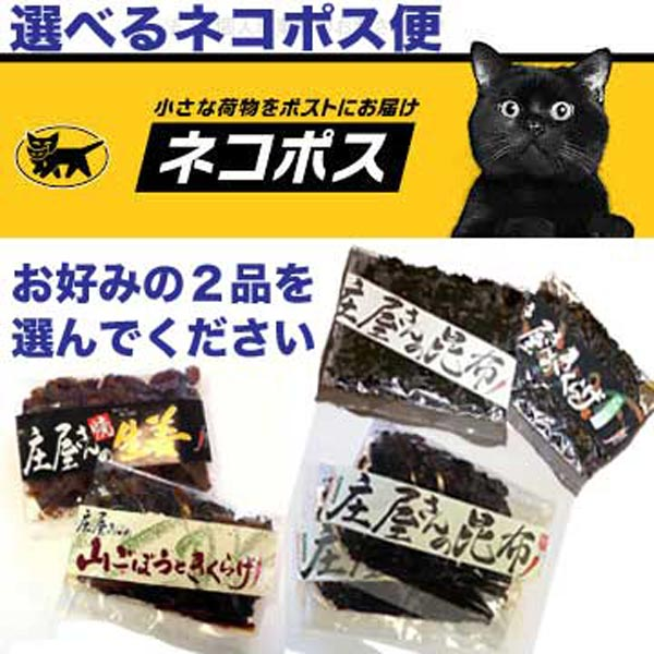 【送料込 ネコポス便】選べる! 2袋セット