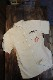 TEDMAN テッドマン TES-1200 ワッペン・刺繍ワークシャツ ベージュ