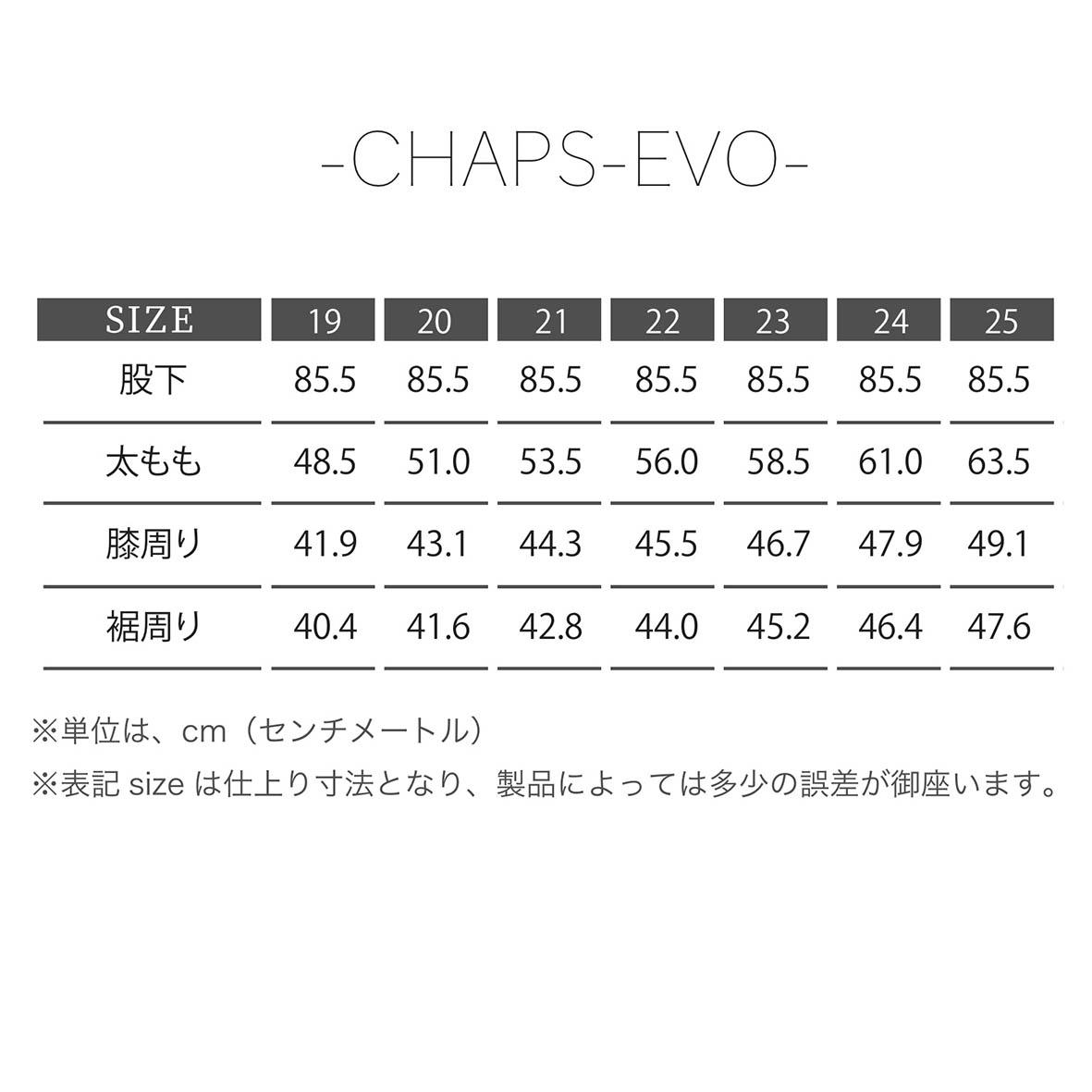 KADOYA(カドヤ) K'S LEATHER CHAPS-EVO2 チャップス-エボ2