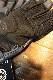 カドヤ(KADOYA) MULTIPLE GLOVE マルチプルグローブ サマーグローブ ネイビー