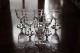 バカラ オステンド ワイングラス 103mm 5015