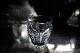 バカラ タリランド ショットグラス 5252