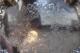 米国 ONEIDA社製 ヴィンテージ シルバープレーテッドトレイ 2552