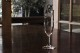 バカラ セビーヌ シャンパンフルート 5013