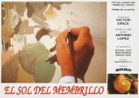 マルメロの陽光 1992年 ヴィクトル・エリセ監督