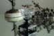 フランス シルバーとクリスタルの小さなベース 4263