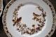 リモージュ Haviland(アビランド)社 鳥の絵が可愛らしいケーキプレート22cm  1894年〜1931年 5184