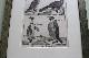 フランス オールドプリント[自然界百科体系図説」 (銅版画)フレーム 0815_02
