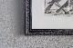 フランス オールドプリント[自然界百科体系図説」 (銅版画)フレーム 0815_03