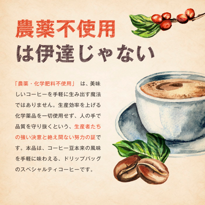 ドリップバッグ コーヒー (5個入) 【ゆうメールで送料無料】