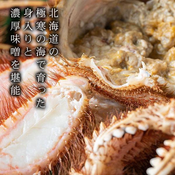 【北海道産】毛ガニ 特大サイズ 1尾から2尾 (1尾あたり 800gから850g前後)[ボイル冷凍]