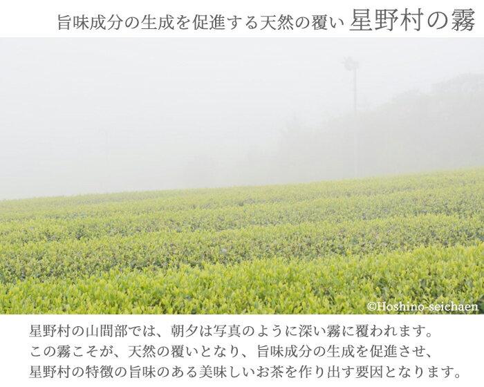 【玉露のふるさと福岡八女星野村のおいしい抹茶/星野製茶園】 JAS認定 有機栽培抹茶 40g缶