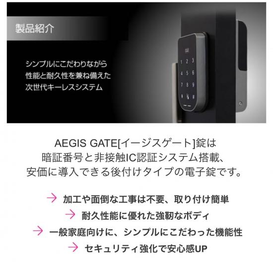 AEGIS GATE イージスゲート