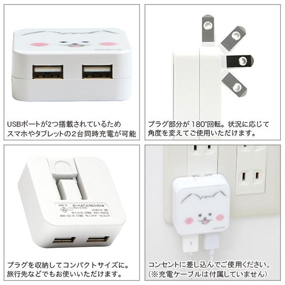 USB2ポート ACアダプタ