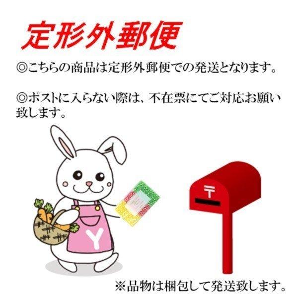 ダスキン スタイルクリーナー紙パック 4枚入 2200円以上で送料無料