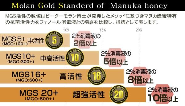 マヌカハニー20+ MGO800+ ピーターモラン博士MGS認証 500g 正規品