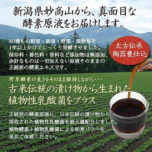 野草酵素 乳酸菌入り 80種の植物醗酵エキス 原液 500ml