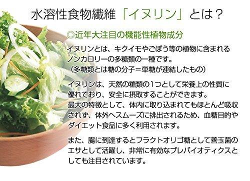 オーガニック イヌリン 有機JAS 天然植物生まれ 水溶性 食物繊維 粉末(パウダー) 200g メール便発送 送料無料