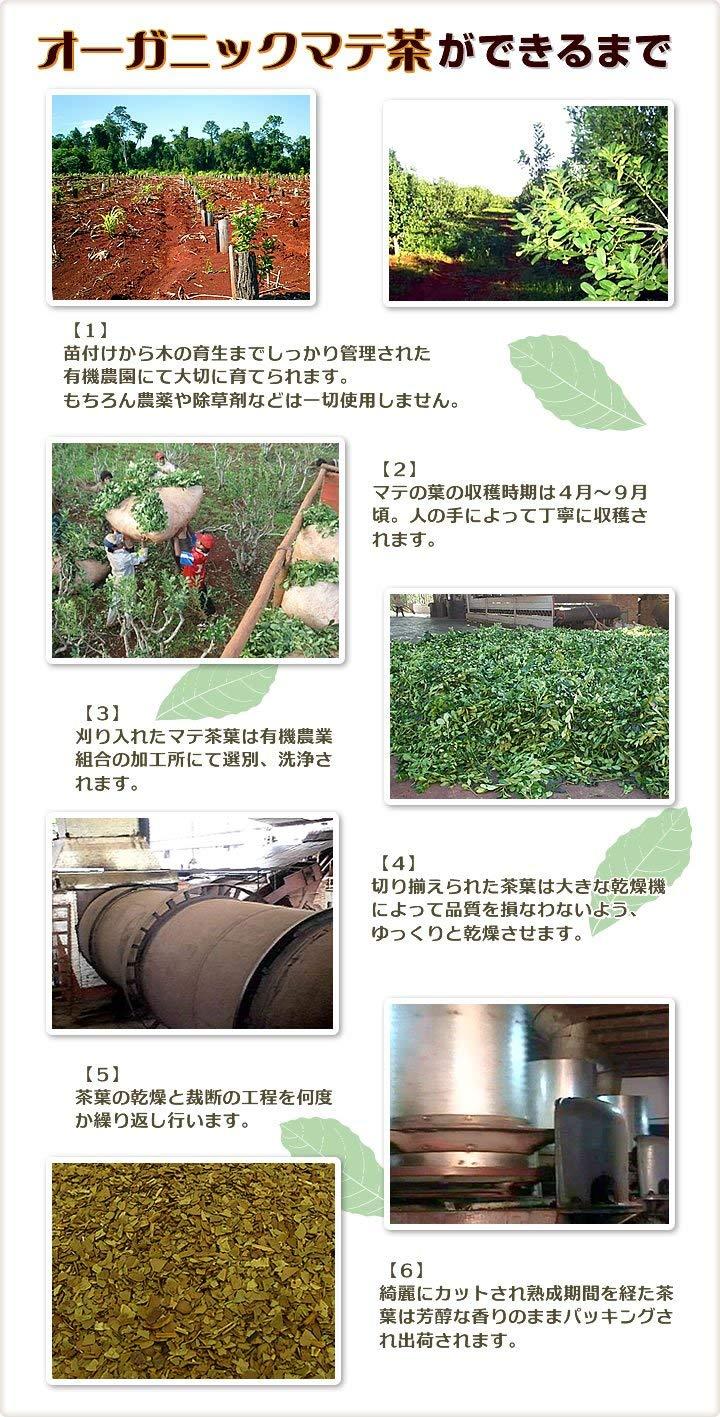 オーガニック マテ茶 有機JAS ブラウン ロースト 2g×30包 メール便発送 送料無料