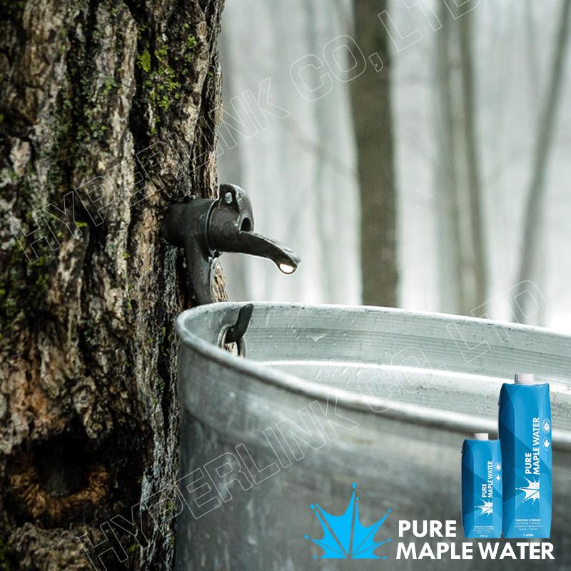メープルウォーター 1L(1000ml) カナダ産メイプル樹液100% プラントウォーター【正規品】新パッケージ