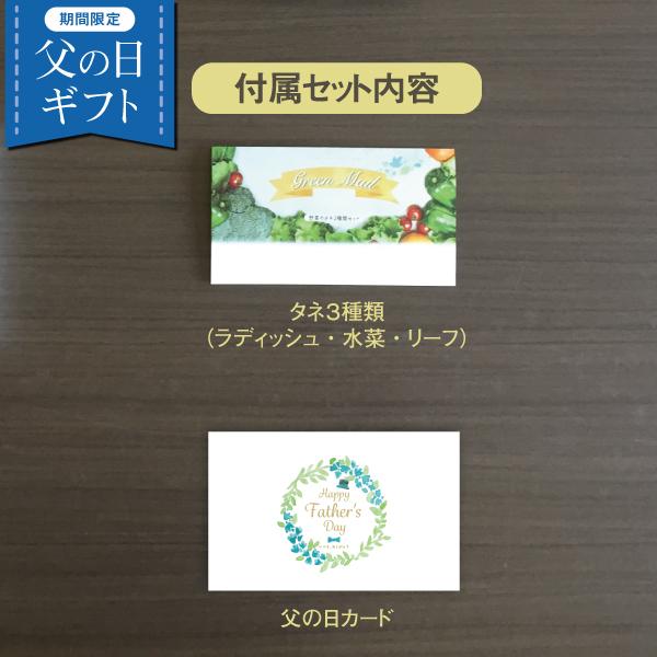 【父の日限定・送料無料】ホームハイポニカPLAABO+種セット