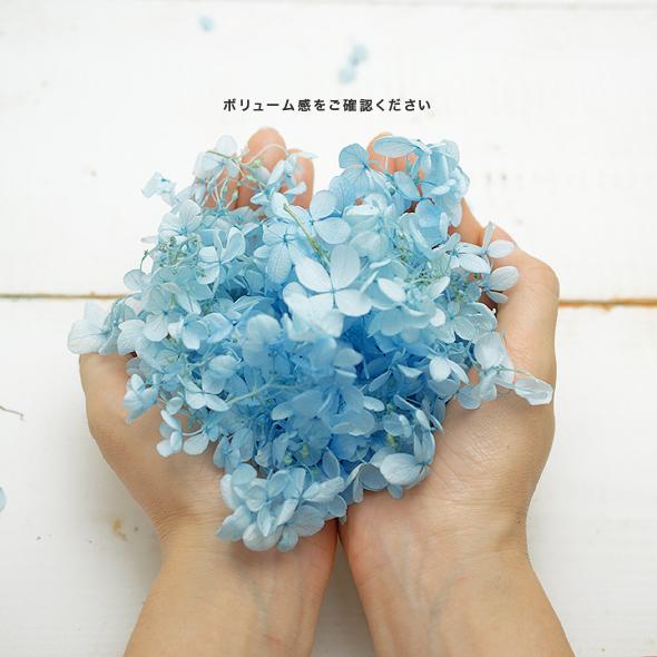 ピラミッドアジサイ・はなびらグラデーション(プリザーブドフラワー) 小分け花材No.81