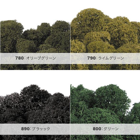 ノルディックモス(プリザーブドフラワー) 小分け花材No.82