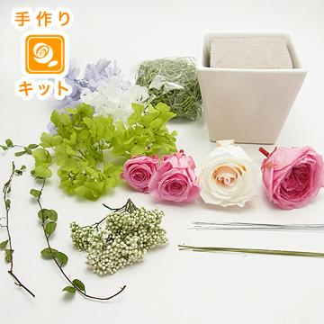 アドレ(BOX付)(フレンチピンク)(キット)