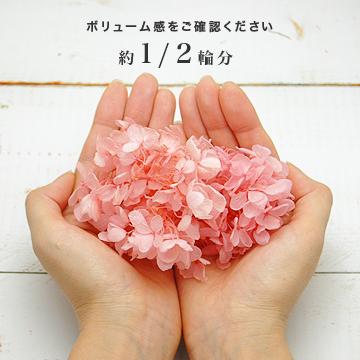 ソフトピラミッドアジサイ・ヘッド(グラデーション加工)(プリザーブドフラワー) 小分け花材No.26