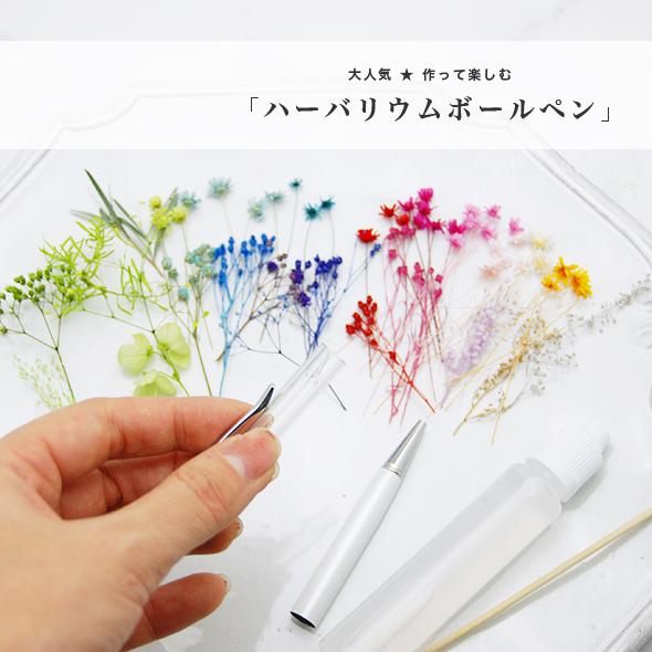 【3本作れる ハーバリウムボールペンキット】 花材 (キット)