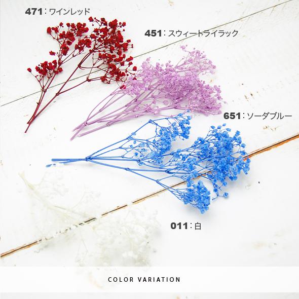 カスミ草・ミリオンスター(プリザーブドフラワー) 箱売りNo.64