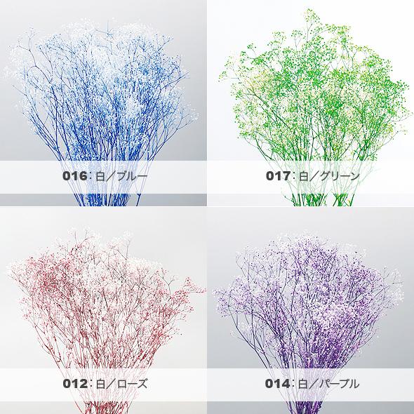 ミニカスミ草・フラワーベール(プリザーブドフラワー) 花材No.23