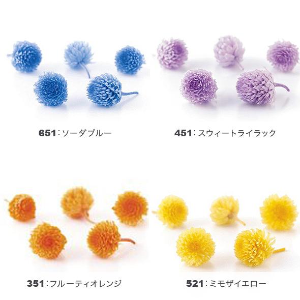 千日紅・プリザーブド・ヘッド(プリザーブドフラワー) 小分け花材No.70