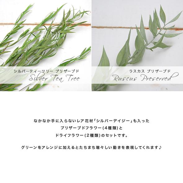 グリーンアソート(ドライフラワー/プリザーブドフラワー) 小分け花材No.50