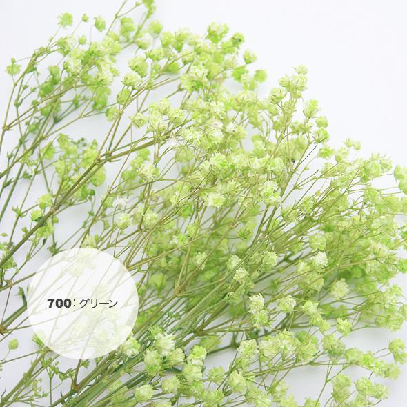 アンティークプリザ・カスミ草(プリザーブドフラワー) 花材No.67
