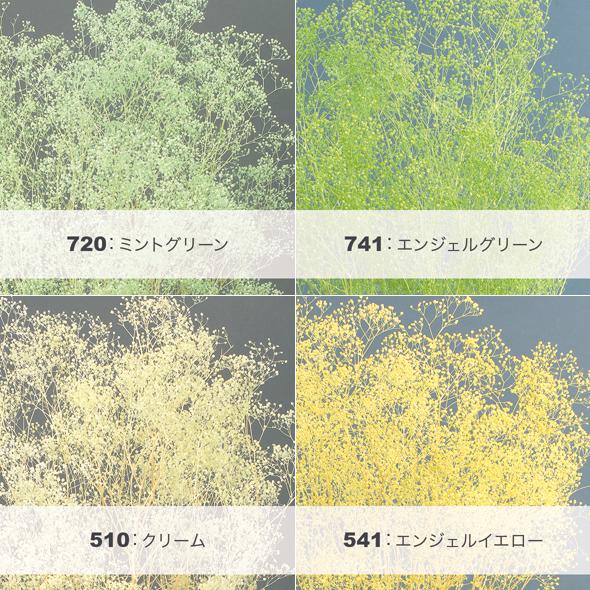 ソフトミニカスミ草・ヘッド(プリザーブドフラワー) 小分け花材No.68