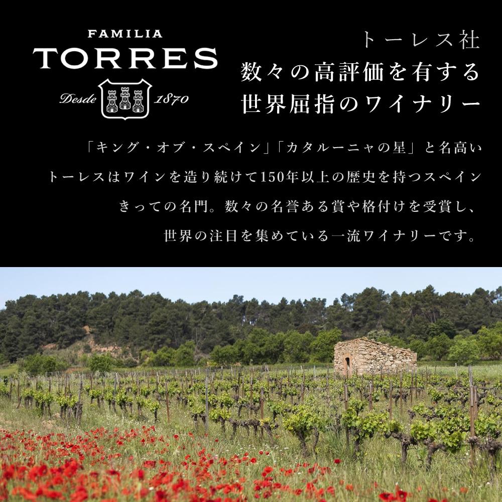 赤ワインセット イベリコ豚 生ハム 6種×50g ギフトセット ※ 金レセルヴァ ブック箱 冷蔵