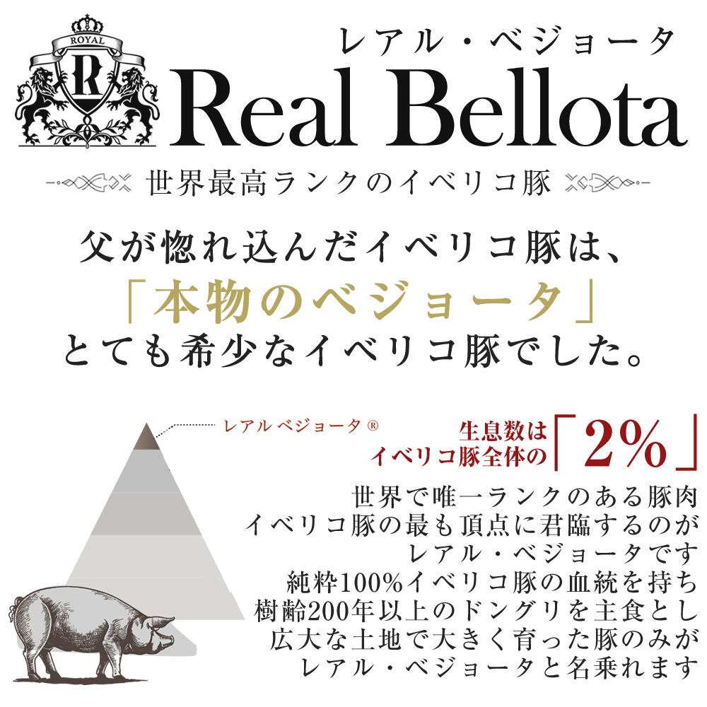 【宮迫博之さんのYouTubeで紹介!】世界一高い生ハム レアル・ベジョータ イベリコ豚 5年熟成 豪華ブック型化粧箱入り 冷蔵 ※ 5年 50g ブック箱