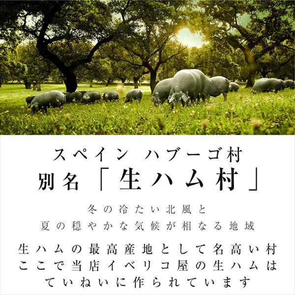 イベリコ豚 生ハム 30ヶ月熟成 50g×2 ギフトセット 冷蔵 ※ 30ヶ月 50g×2