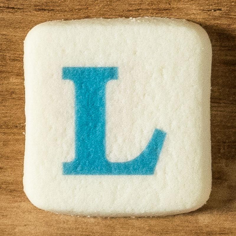 アルファベットクッキー L