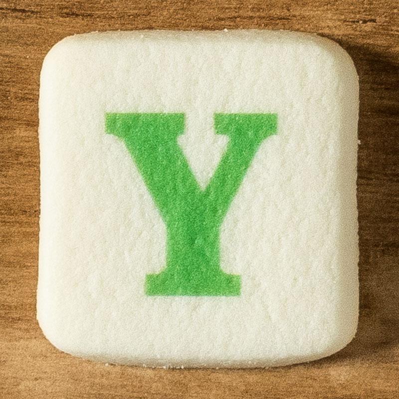 アルファベットクッキー Y
