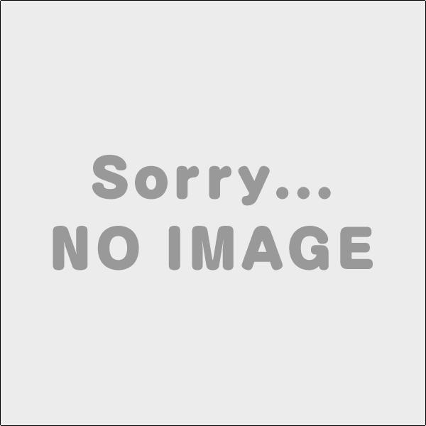 【KAFP531B160】オーケー器材