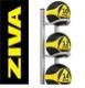 メディシンボール5個+5マルチボールツリー/ボールラックセット(2kg-10kg)/メディシンボール・ラックセット〈業務用〉《ZIVA(ジーヴァ)》