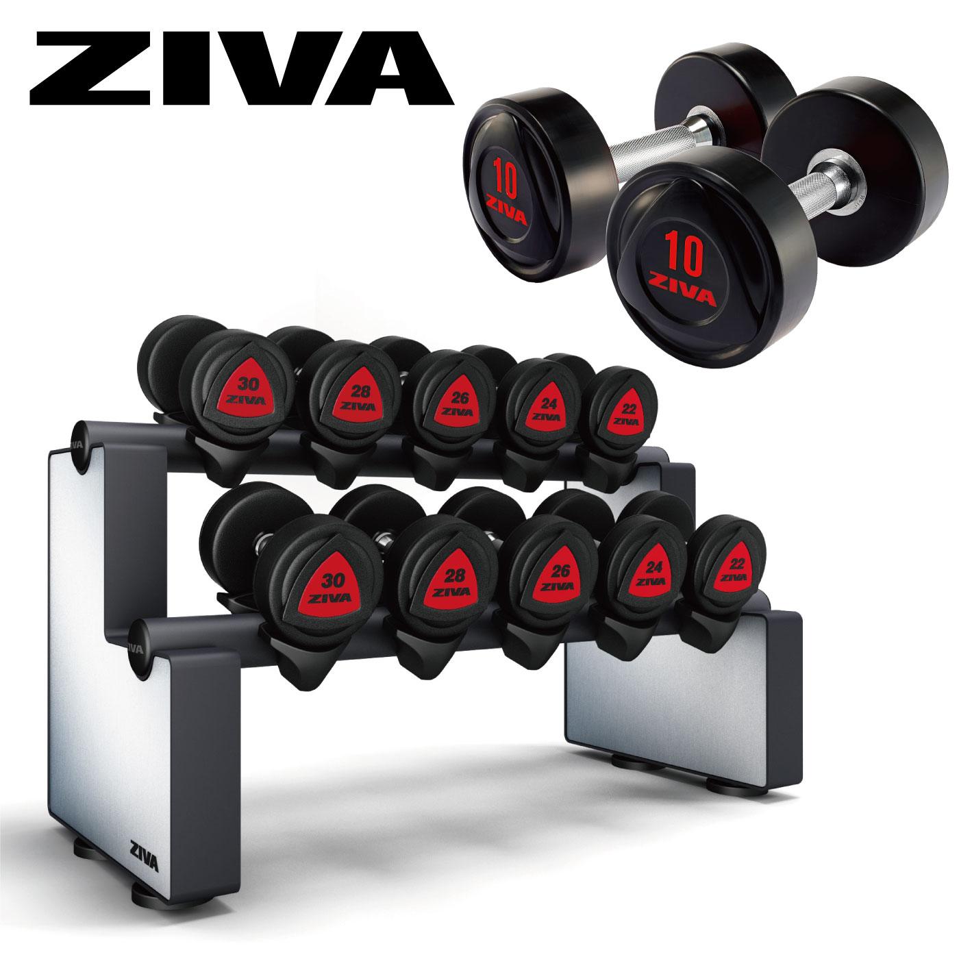 ラバーダンベル5ペア+ダンベルラックセット(2.5kg-22.5kg)/ダンベル・ラックセット〈業務用〉《ZIVA(ジーヴァ)》