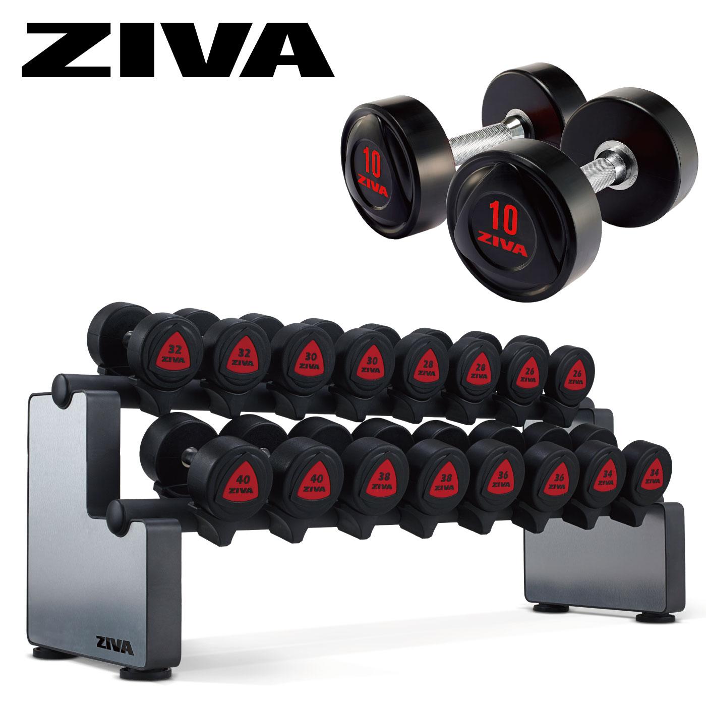 ラバーダンベル10ペア+ダンベルラックセット(5kg-50kg)/ダンベル・ラックセット〈業務用〉《ZIVA(ジーヴァ)》