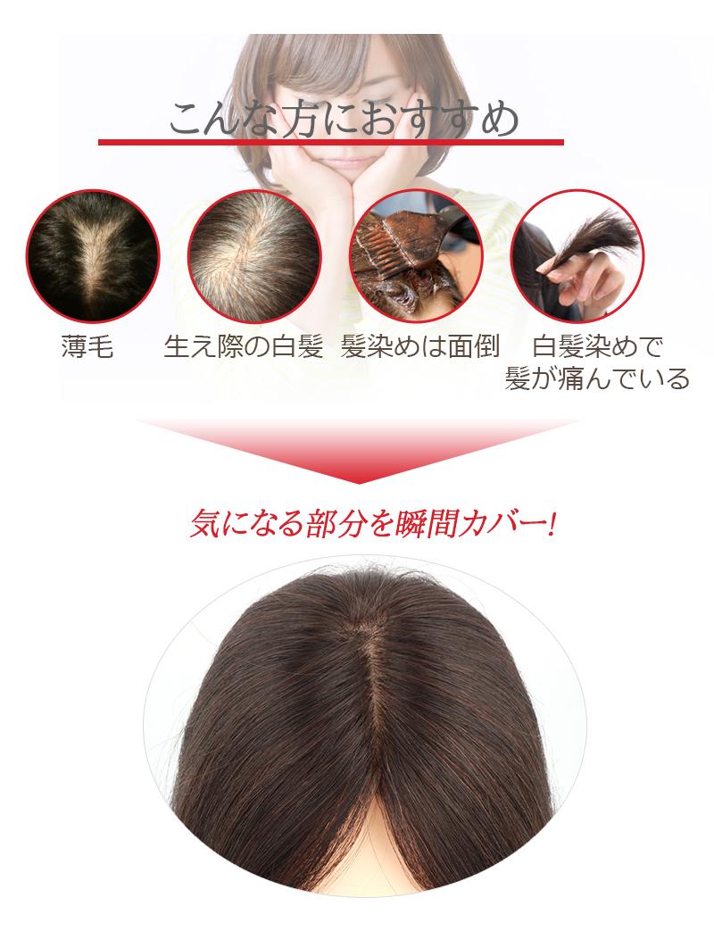 人毛100% 前髪ウィッグ 20cm 部分かつら ポイントウィッグ 白髪かくし つけ毛 私元気 BAZF710-20[10691]