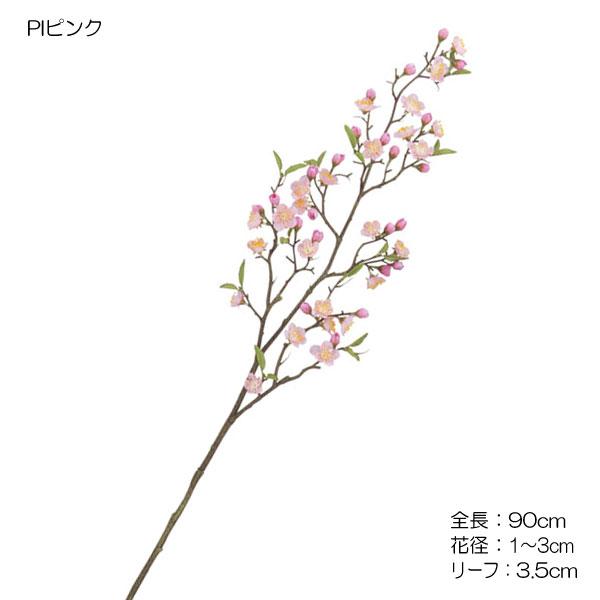 常陸の梅【送料区分:1】